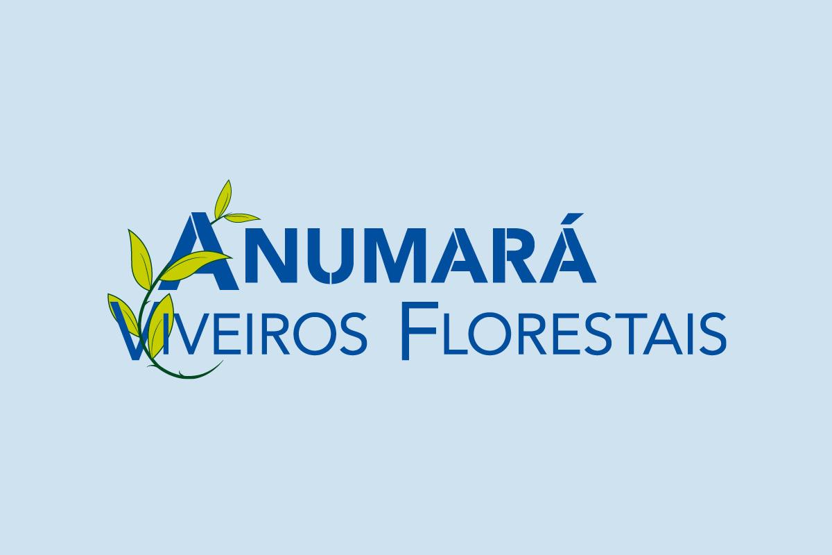 logo Anumara