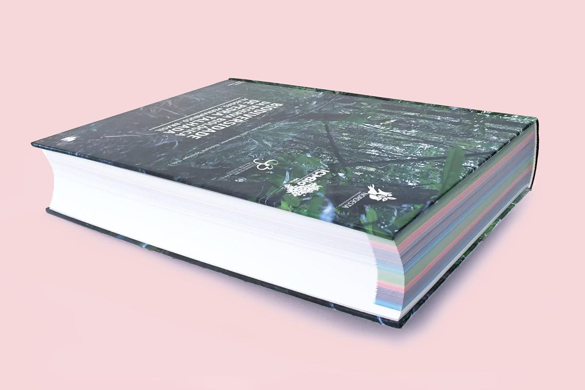 Livre Pedra Talhada